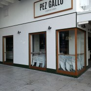 Bar Pez Gallo